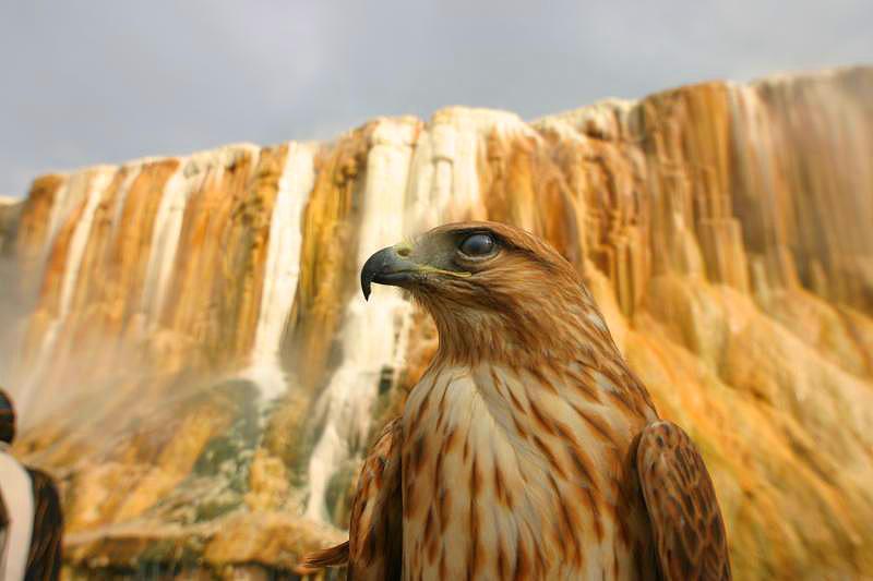 رحلة الى مدينة حمام دباغ الساحرة فى الجزائر