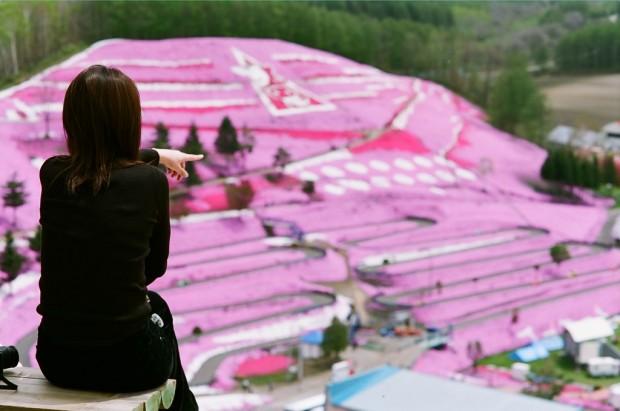 صور Higashimokoto اليابانية : وجهة عشاق الأزهار والورود حول العالم