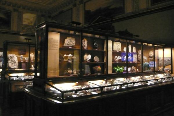 صورمتحف فيينا.. تأريخ للحياة على سطح الأرض