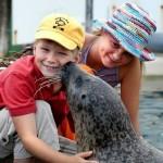 الولايات المتحدة بها بعض المعالم السياحية المناسبة لزيارة الأطفال