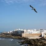 صور أجمل مناطق الجذب السياحي في المغرب العربي