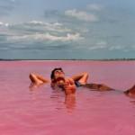رحلة الى بحيرة ريتبا فى شبه جزيرة كاب فير من السنغال