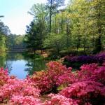 تتميز جورجيا بوجهات النظر الطبيعية الخلابة