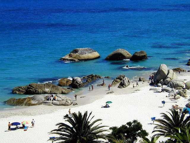 معلومات سياحيه عن كيب تاون أكبر مدينة في جنوب أفريقيا