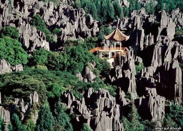 بالصور - غابات الأحجار في الصين