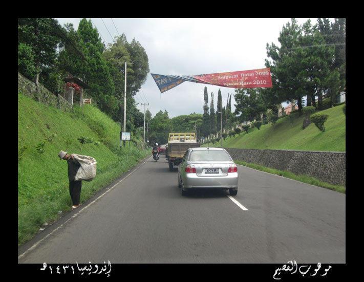 تقرير رحلتى الى اندونيسيا بالصور