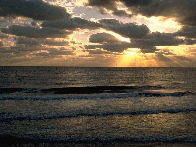 شاليهات خليج الرايس