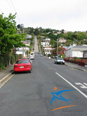اهم شارع فى نيوزلاندا 2014