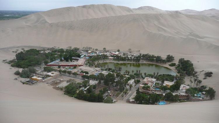 صحراء تجذب أغني أغنياء العالم- المها- دبي الإمارات
