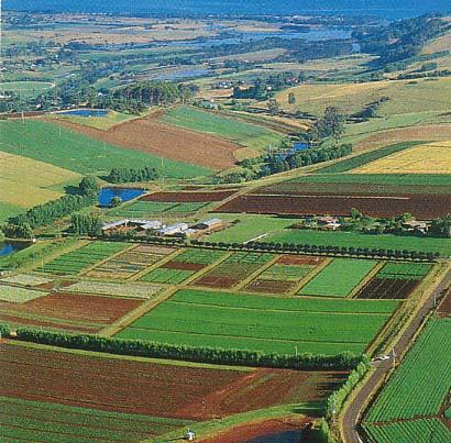 تاسمانيا هي ولاية وجزيرة أسترالية صور  _ السياحة فى استراليا