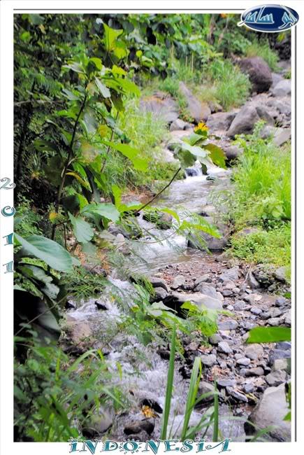 تقرير مصور عن شلال Yeh Mempeh ( جزيرة بالي ) صور رائعة