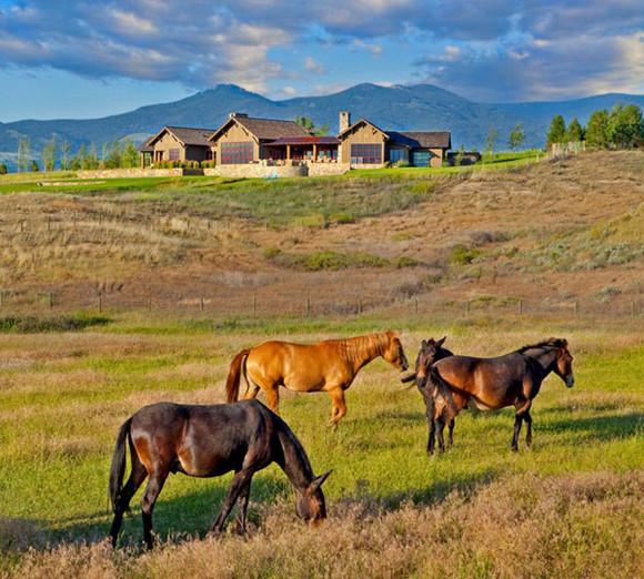 مزرعة الماشية فى مونتانا بأمريكا